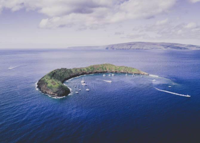 미주/하와이
